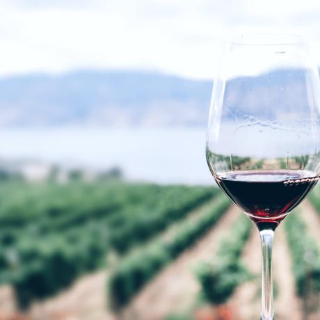 wineglass7.png
